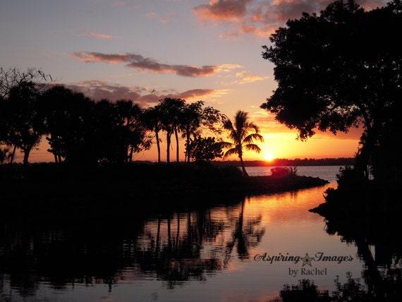 Sunset Photography, Black Gray Orange, Vibrant Bold Wall Art, Tropical Trees Décor, Silhouette Print, Water, Amber Sunset Photo, Florida Art