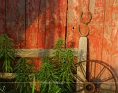 Time Gone By Fine Art Photography