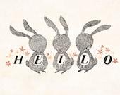 Hello, Rabbits - 5x7 Print