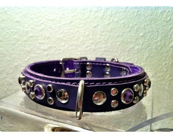Perfection Your Color Choice Leather Dog Collar