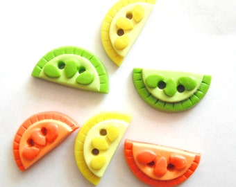 Button Citrus Slices handmade polymer clay buttons ( 6 )