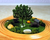 Nature's Beauty Miniature Garden - Desktop Garden, Mini Garden, 4 inch Garden