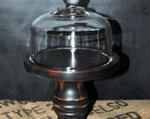 Glass Cloche on Black Wooden Base