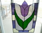 Purple Burst Tulip