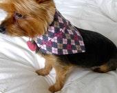 Pink Arglye Dog Bandana - S