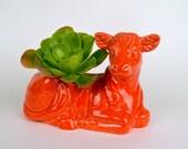 Vintage Design Ceramic Cow Planter Pot , Sunset Red
