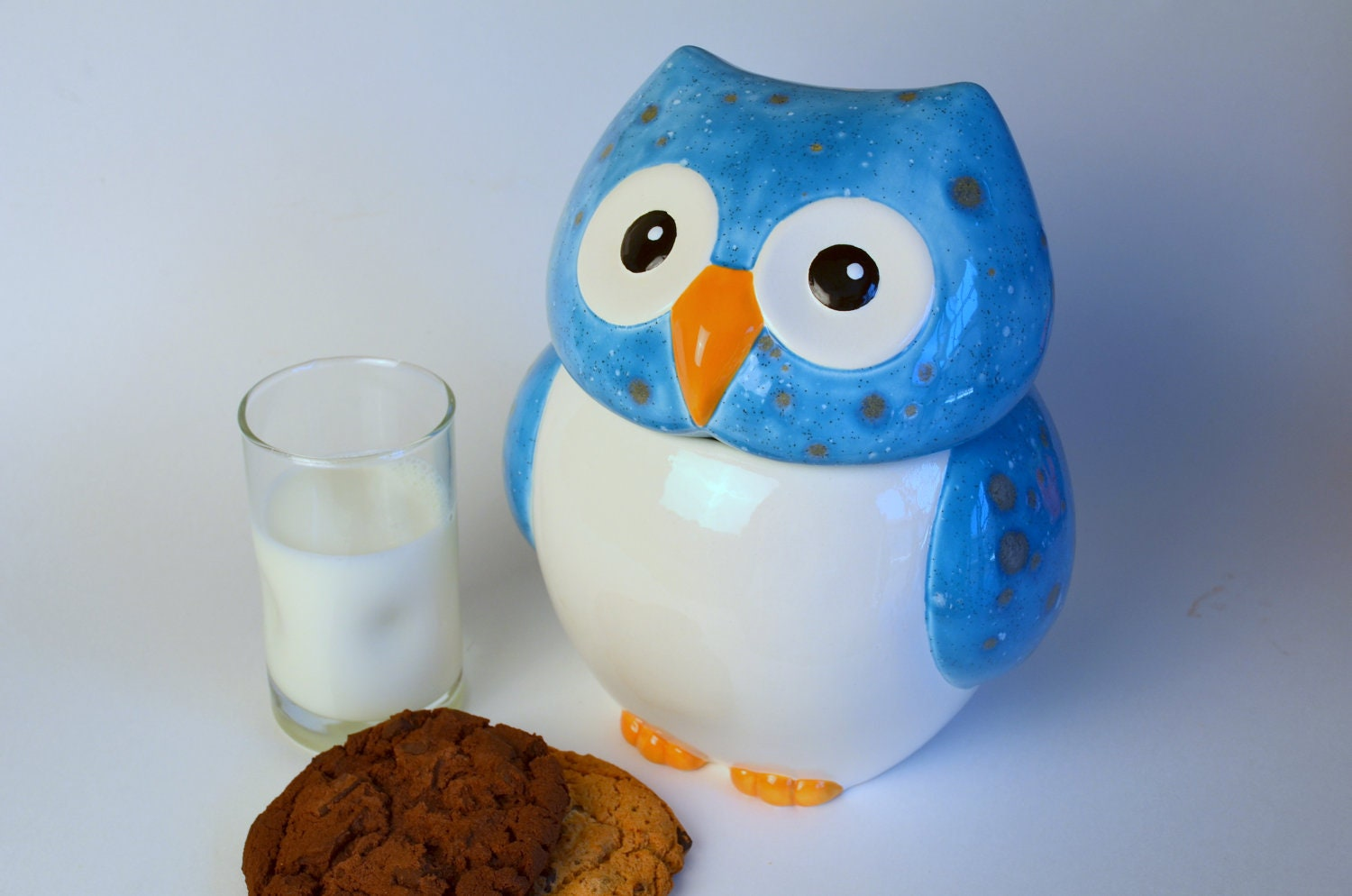Reserved For Dwright888 Ceramic Owl Cookie Jar Canister By Modclay