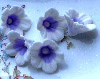 24 Multi Colored Gum paste Flower
