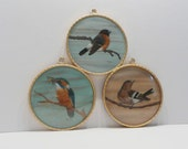 Cut paper, real feathers, hand painted, signed bird art