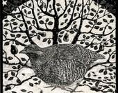 Partridge in Snow Art Print of original Scraperboard