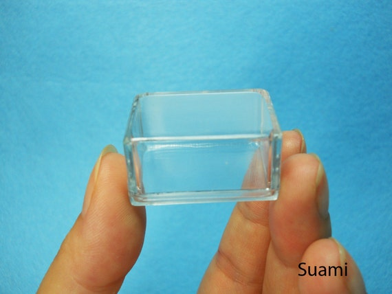 Small Clear Plastic Boxes, Display Boxes, Clear Display Cases,Transparent plastic box, Eco system terrarium boxes - Set of 12 PCS