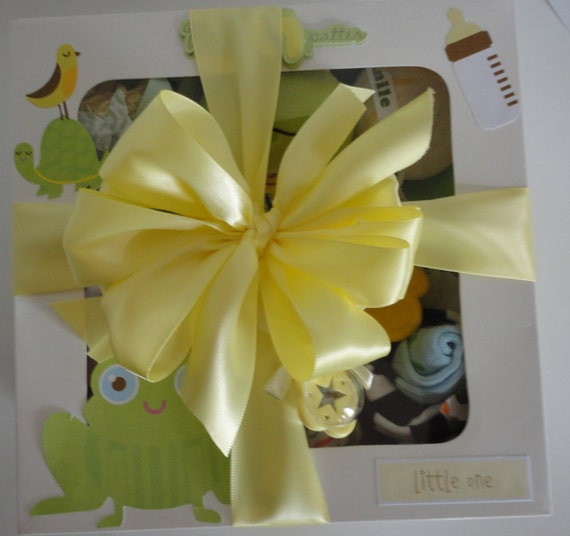 Frog Theme Baby Gift Set and Bonus Toy