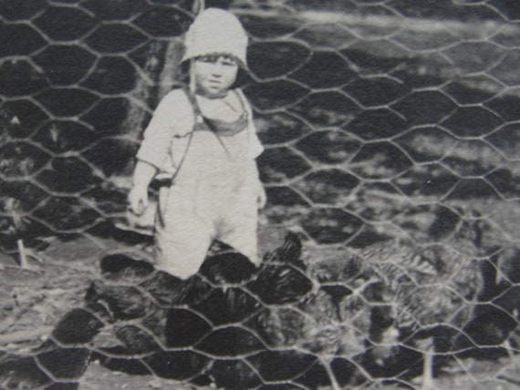 Vintage child with chickens photo