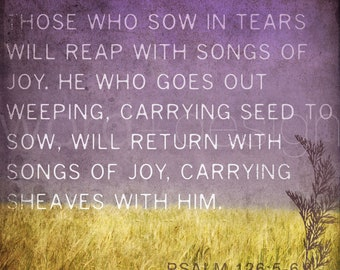 Those Who Sow in Tears