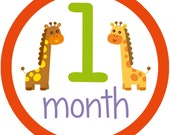 Baby month by month iron on or sticker decals and transfers Noah's Ark jungle animal twins