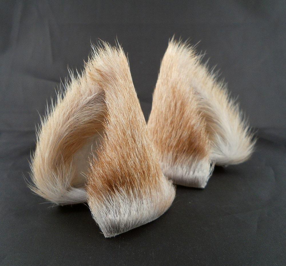 Kitten Ears Pet Play
