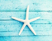 "Beach Photography - starfish aqua blue white photo print seashore coastal living cottage decor - 11x14, 8x10 Photograph, ""On the Boardwalk"""