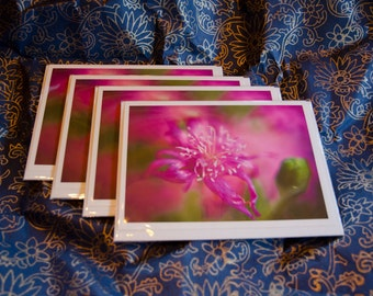 "Set of 4 (four), 5 1/2 x 7 3/8 Blank Photo Notecards with Envelopes, ""Imajica"""