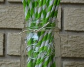 25 Lime Green stripe ecofriendly paper straws