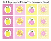 NEW INSTANT DOWNLOAD  The Pink and Yellow Bake Sale/ Lemonade Stand Collection Party Printable 2 inch Tags