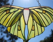 Upcycled Green Asian Luna Moth Stained Glass Window Hanging