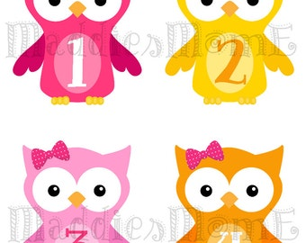 Monthly Baby Girl Stickers, Milestone Stickers, Baby Month Stickers, Monthly Bodysuit Sticker, Monthly Stickers Owls (Ella)