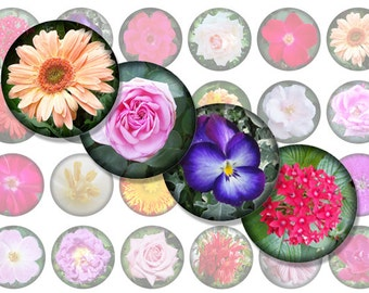 Garden Flowers / Printable 1-Inch Circles / Bottlecap Images / Flower Photographs / Rose, Daisy, etc, Jewel Tones / Instant download