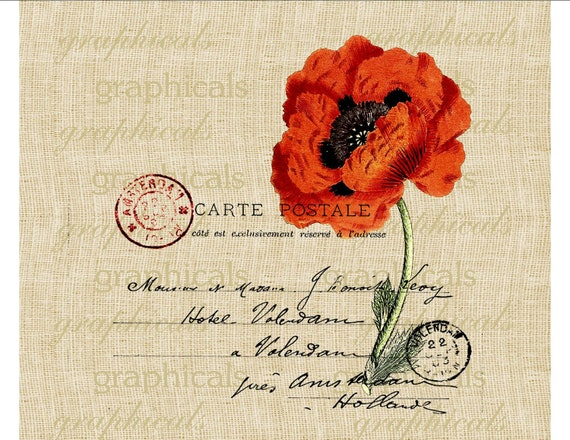 French postcard orange Poppy Digital download graphic image for Iron on fabric transfer burlap tote bags decoupage pillows cards No. 438