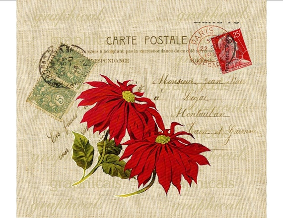 christmas red poinsettia carte postale paris digital download. Black Bedroom Furniture Sets. Home Design Ideas
