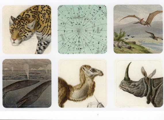 mini stickers - assorted antique images on tiny vinyl stickers - jaguar whale camel rhino celestial pterodactyl series