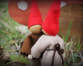 Gnome House with Gnome Couple