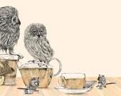 Owls & Tea