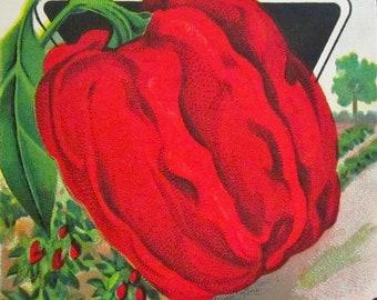 Vintage 1940's Original Litho Seed Packet Vibrant Red, Red Pepper Seeds, Originals, Wonderful Graphics,