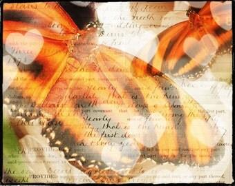 Butterfly Art Print, Botanical Art, FIne Art Photography, Bokeh, Nature Art, Typography Art