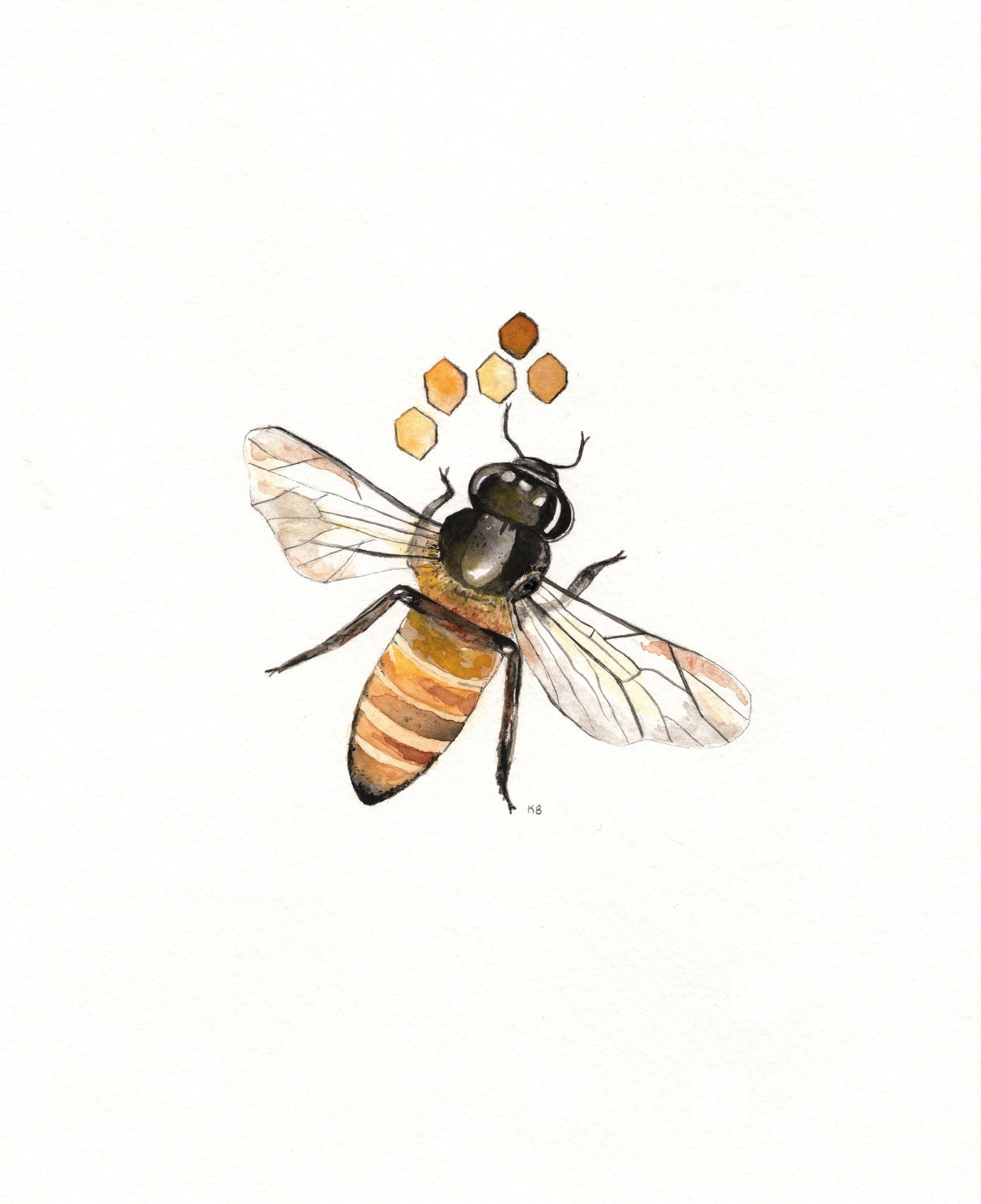 Honey Bee In Style Black And White Illustration Clip Art