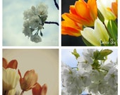 Romantic flower photography, set of four, flower images, spring home decor, feminine wall art, bedroom wall flower art, floral photo