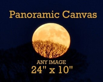 Panoramic Canvas, 24 x 10 inches, any image, moon photography
