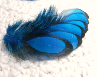 Deep Blue Feathers, Craft Feathers, Black Laced Hen Qty12