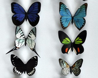 Butterfly Moth Magnets Kitchen Decor Set of 12 Insects Refrigerator Magnets Gifts Handmade
