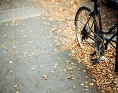 Bikes and Fall Leaves - a 5x7 film print