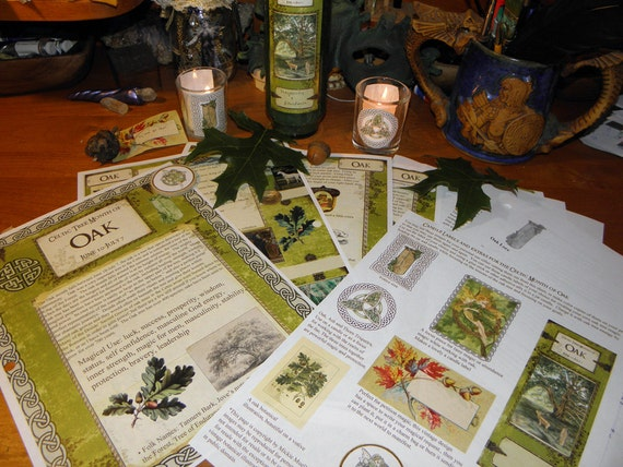 Celtic Tree Calendar Series: Oak Month June 10-July 7