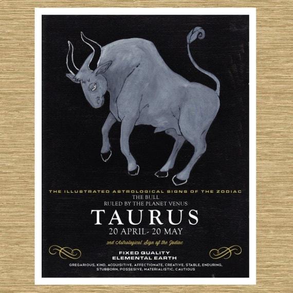 """Illustrated Zodiac Taurus the Bull 8"""" x 10"""""""