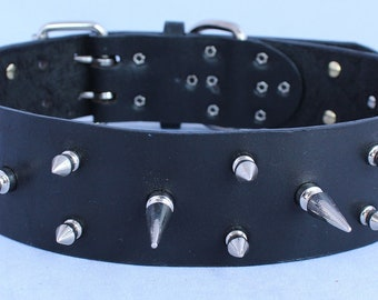 Long Spiked Leather Dog Collar 2