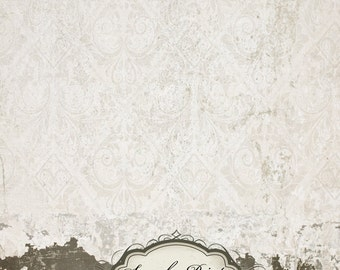 5ft x 6ft Vintage Damask Grunge Wall / Vinyl Photography Backdrop Floordrop Newborn photos