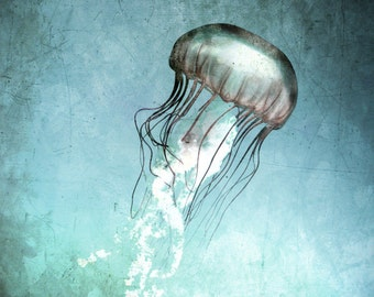 Jellyfish Art Print - Teal Aqua Navy Blue  Beach House Home Decor Nursery Childrens Room Ocean Art Photo Vintage Photograph
