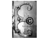 ONLY  1.99 INSTANT  Letter Art - 4x6 individual photo download - printable  - digital image - alphabet, nature, architectural. Letter E -E24