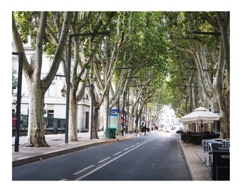 Avignon France Photo Print