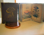 Very old Mushroom Book Miniature book 1 to 12