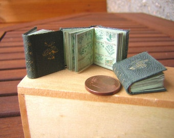 Very old Herbal book Miniature book 1 to 12