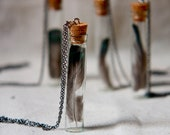 botanical vial necklace preserved specimen corked top feather on an extra long chain. boho shabby chic - StudioBotanica